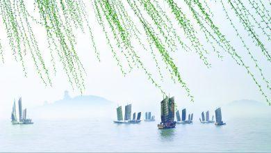 Photo of 无锡•常州 | 遇见太湖的辽阔