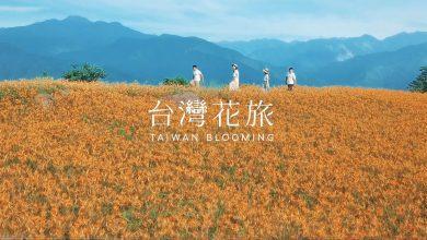 """Photo of """"花""""时间去台湾农场吧!竞赛详情"""