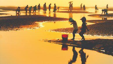 Photo of 江苏自然好风光之黄金海滩