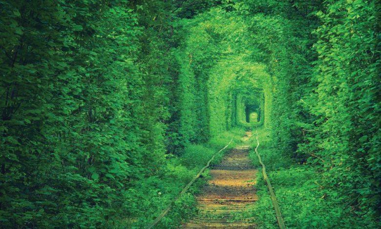 Photo of 世界旅游趣 漫步在爱的隧道