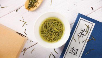 "Photo of 颠覆舌尖 ""食""茶的智慧"