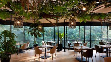 Photo of 前往秘鲁餐厅 Canchita,深入亚马逊丛林展开味蕾探险