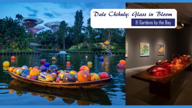 Photo of Dale Chihuly 滨海湾花园玻璃艺术展8月1日结束