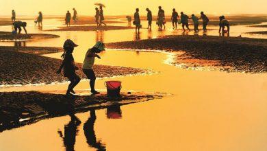 Photo of 南通&连云港 | 海与岛和你想的不一样!