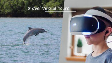 Photo of 透过这些马来西亚线上虚拟游,解解你的旅游瘾!